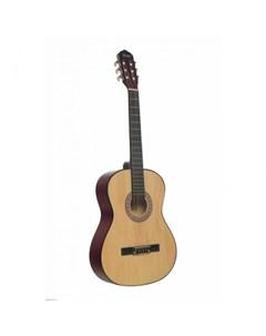 Музыкальный инструмент Классическая Гитара TC 3901A NA Terris