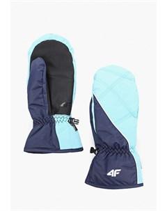 Варежки горнолыжные 4f