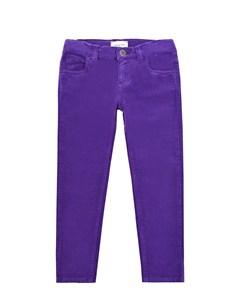 Фиолетовые брюки из хлопка Gucci