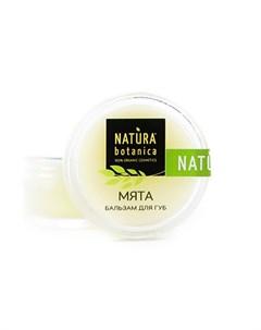 Бальзам для губ Мята 10 г Natura botanica