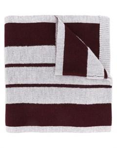 полосатый шарф Coach