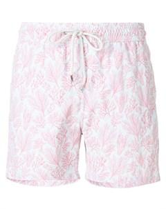 Плавательные шорты Crazy Coral Love brand
