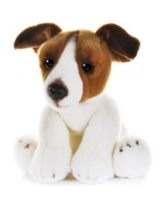 Мягкая игрушка Собака Джек рассел 30 см Maxilife
