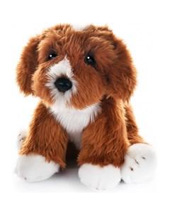 Мягкая игрушка Собака Кавапу 30 см Maxilife