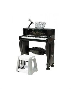 Музыкальный инструмент Пианино Melody Everflo