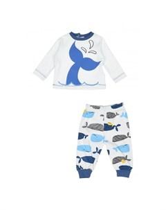 Костюм для мальчика брюки и кофта PN14312 Panolino