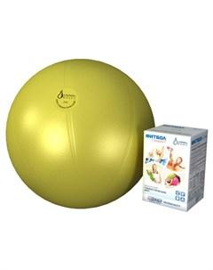 Мяч гимнастический фитбол Стандарт 55 см Альпина пласт