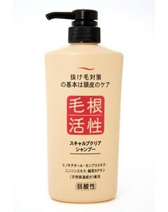 Шампунь для укрепления и роста волос junlove scalp clear shampoo Junlove