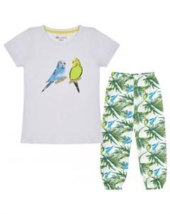 Пижама для девочки Попугаи Kogankids