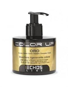 Color up тонирующая маска oro 250мл золотой Echosline