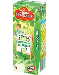 Сок яблочный с мякотью 200мл Сады придонья