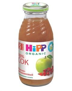 Сок Bio juice Яблочно шиповниковый с мякотью 200мл Hipp