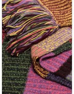 полосатый шарф с бахромой The elder statesman