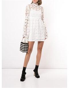 Кружевное платье Carnation Macgraw