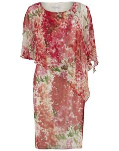 Платья и сарафаны приталенные Gina bacconi