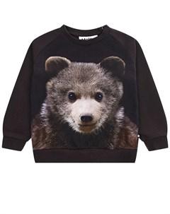 Свитшот Disco Bear Cub детский Molo